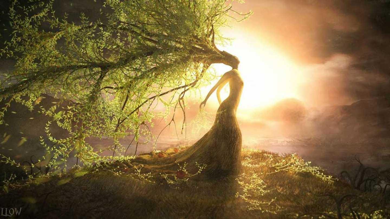 Cours sur l'Energie et la Spiritualité des 1ères Nations en relation avec la musique